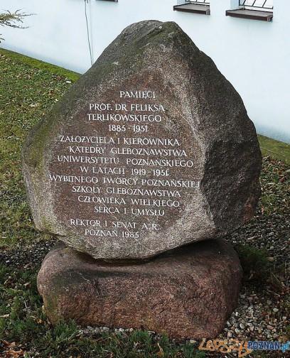 Kamień pamiatkowy prof Feliksa Terlikowskiego na poznańskim Boninie Foto: wikipedia