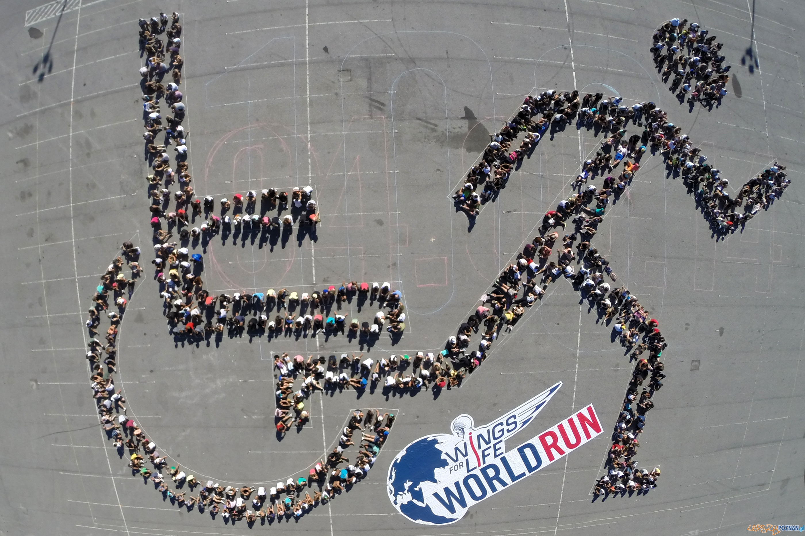 Wings for Life World Run  Foto: Cacalos Garrastazu / Red Bull Content Pool