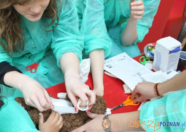 Badania profilaktyczne  Foto: IFMSA