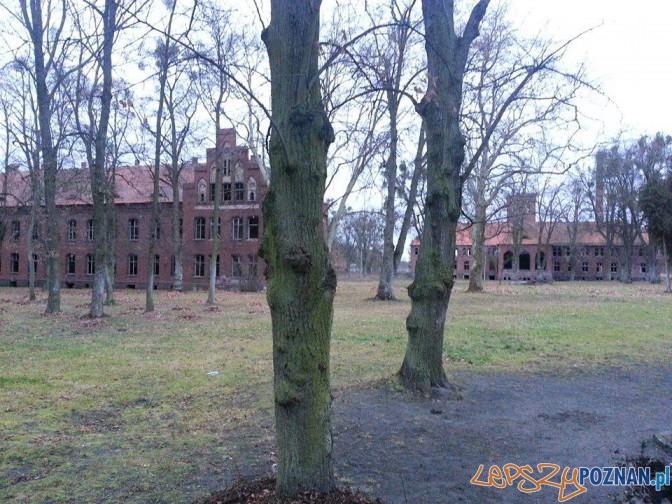Psychiatryk w Owińskach Foto: Adam Foetke/psychiatryk owińska/facebook