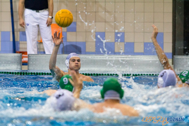 DSW Waterpolo Poznań - Legia Warszawa Foto: lepszyPOZNAN.pl / Piotr Rychter