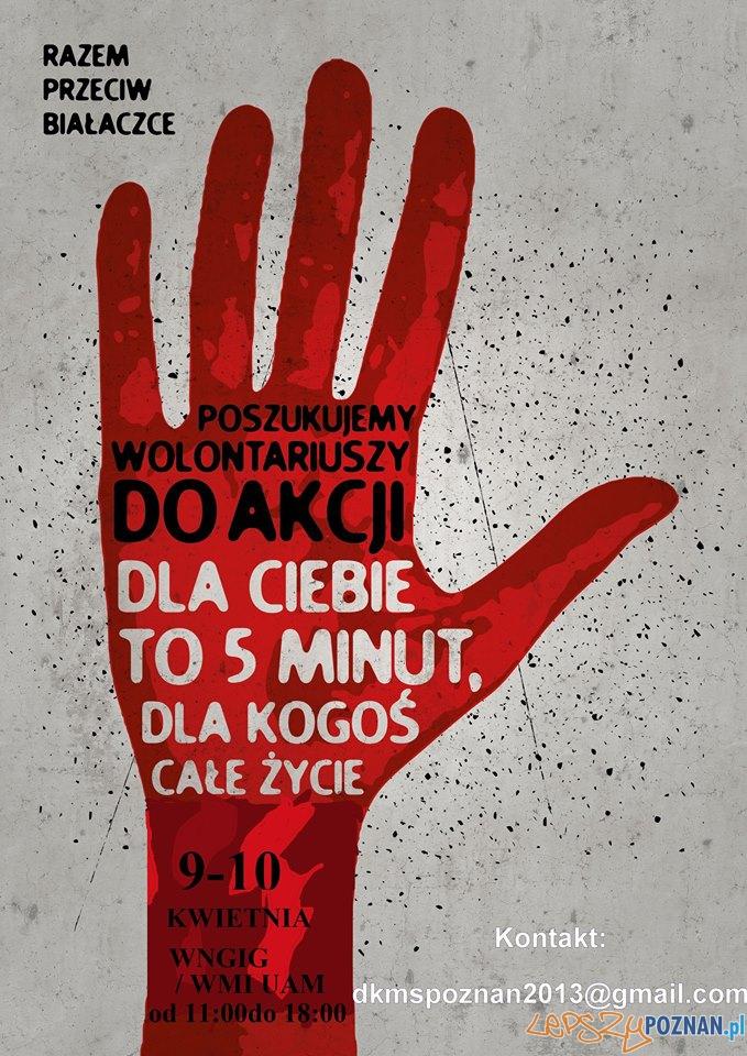 Razem przeciw białaczce  Foto:
