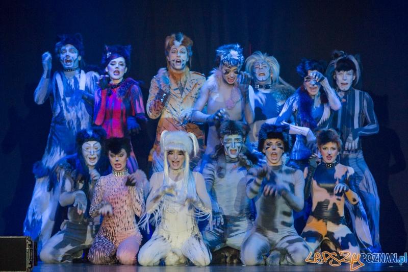 Teatr Roma - Ale Musicale  Foto: lepszyPOZNAN.pl / Piotr Rychter
