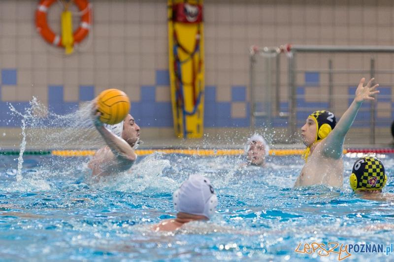 DSW Waterpolo Poznań - ŁSTW Uniwersytet Łódzki (Tomasz Różycki, Ivan Kulakov)  Foto: lepszyPOZNAN.pl / Piotr Rychter