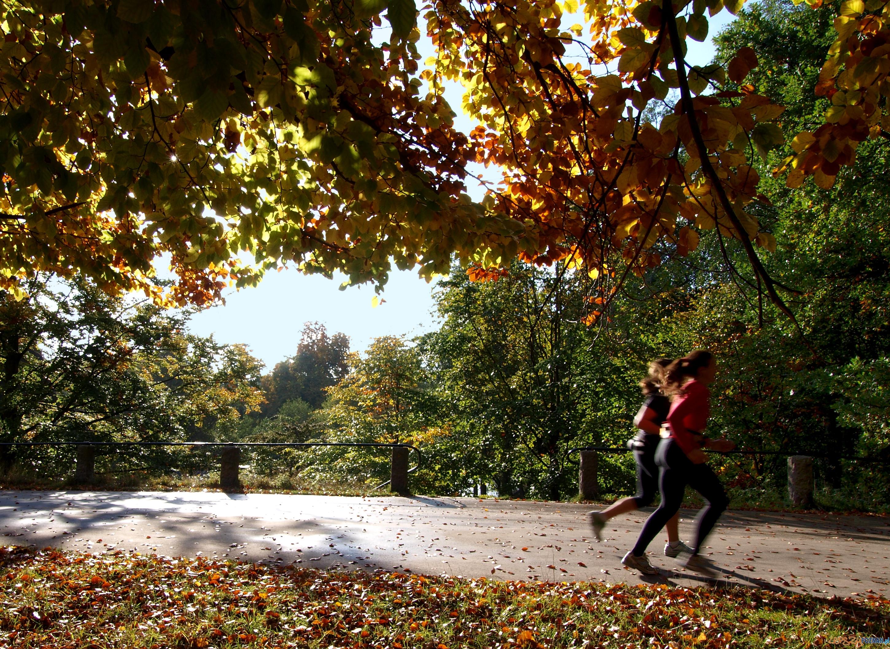 beganie  Foto: sxc.hu / johnnyberg