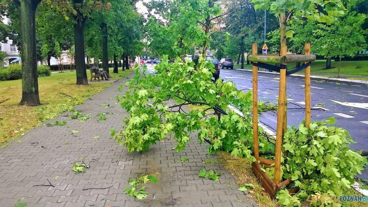 Po popołudniowej burzy  Foto: lepszyPOZNAN.pl / gsm