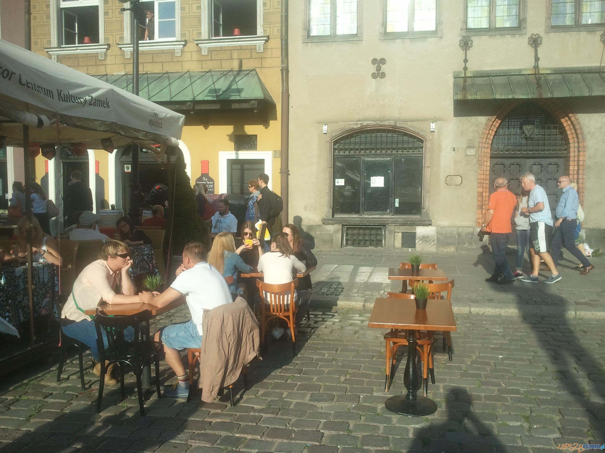 Nielegalny ogródek na Starym Rynku  Foto: news@lepszypoznan.pl