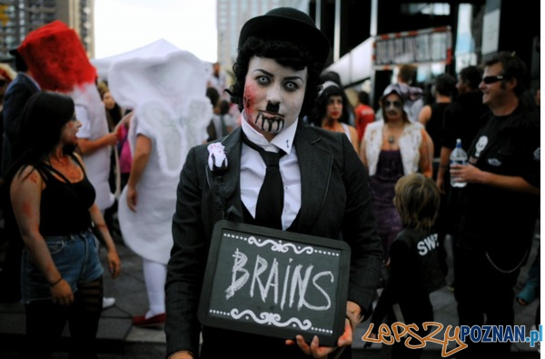 Doc Of The Dead (USA, 2014)  Foto: mat. prasowe