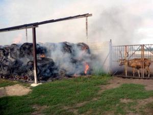 Pożar w Murowanej Goślinie Foto: Łukasz Klup