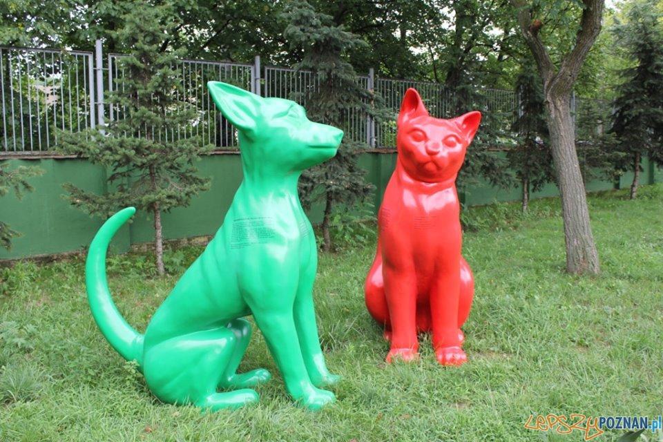 Figury psa i kota ukryte w Poznaniu  Foto: Schronisko dla zwierząt w Poznaniu