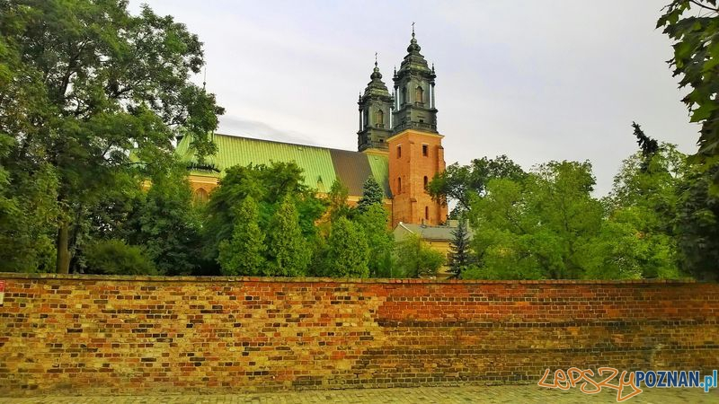 Katedra od ulicy Posadzego  Foto: Tomasz Dworek