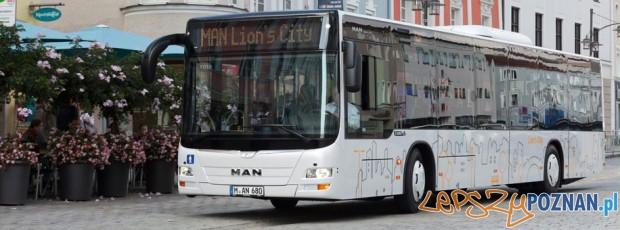 lions city Foto: MAN