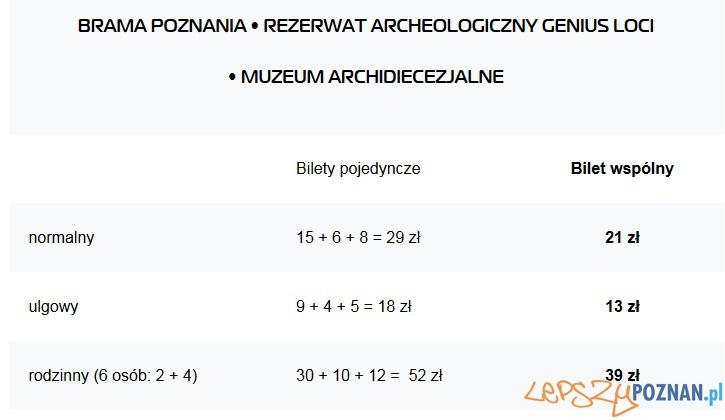Bilety Ostrów Tumski
