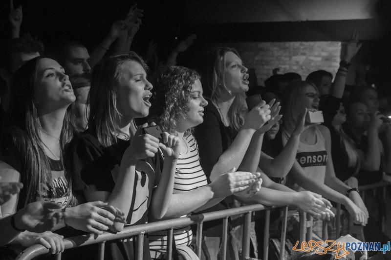 Koncert zepołu Happysad  Foto: Pawel Rychter
