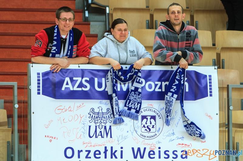 AZS UAM Poznań - ISD AJD GOL Częstochowa 5:3 (2:2) - Poznań 4.01.2015 r.  Foto: LepszyPOZNAN.pl / Paweł Rychter