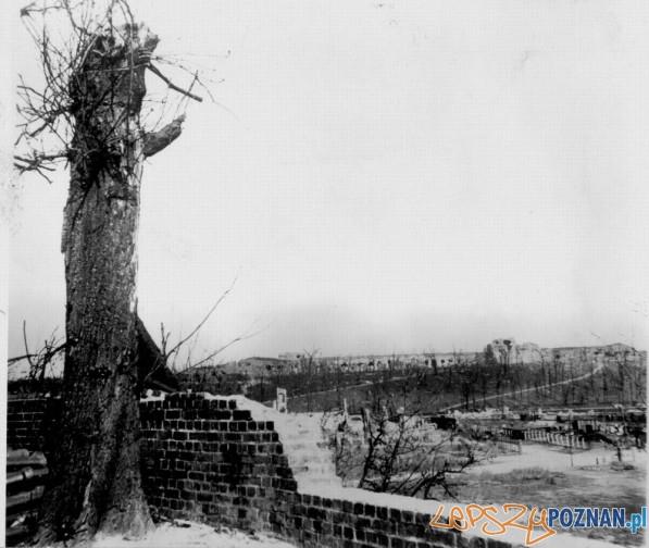 Cytadela w 1945 roku Foto: odkrywca.pl