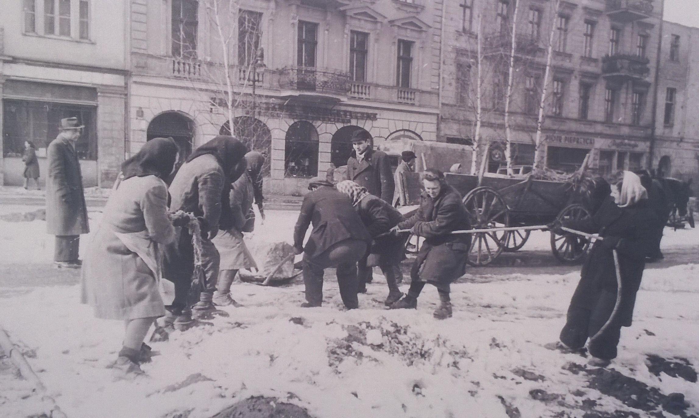 Sadzenie brzóz w Alejach Marcinkowskiego - 11 marca 1949