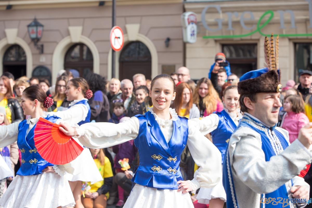 Dzień Motyli  Foto: lepszyPOZNAN.pl / Piotr Rychter