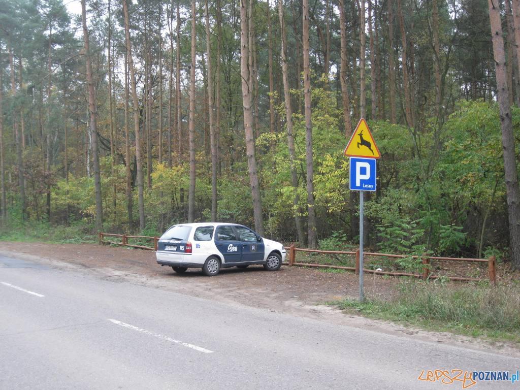 Parking lesny  Foto: Straż Miejska Miasta Poznania