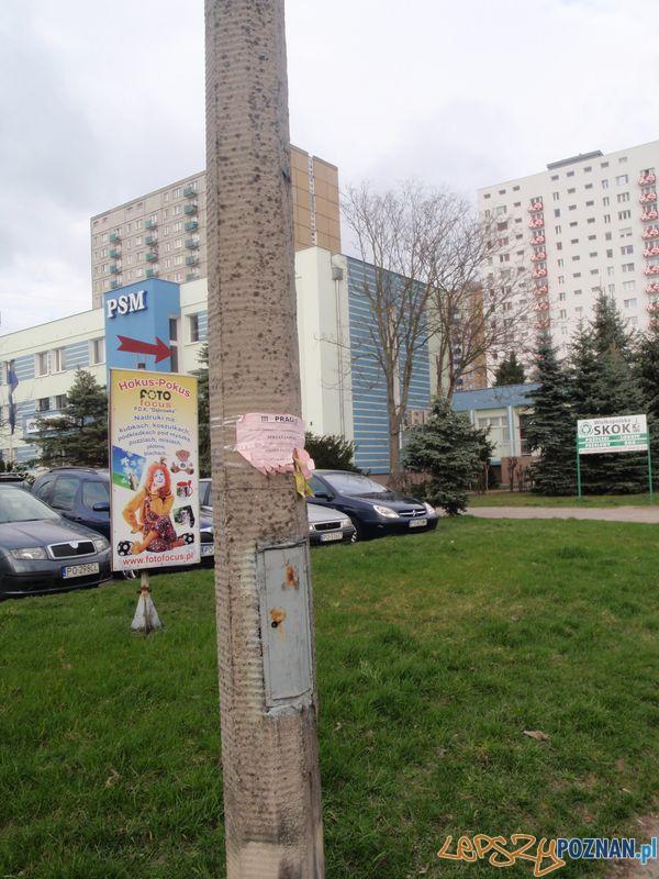Nielegalne plakaty na Piątkowie  Foto: Straż Miejska
