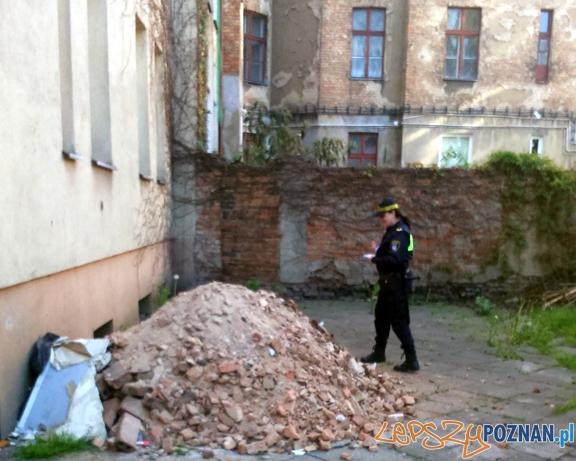Strażnicy Miejscy z Wildy ujawnili podwórze tonące w śmieciach Foto: Straż Miejska