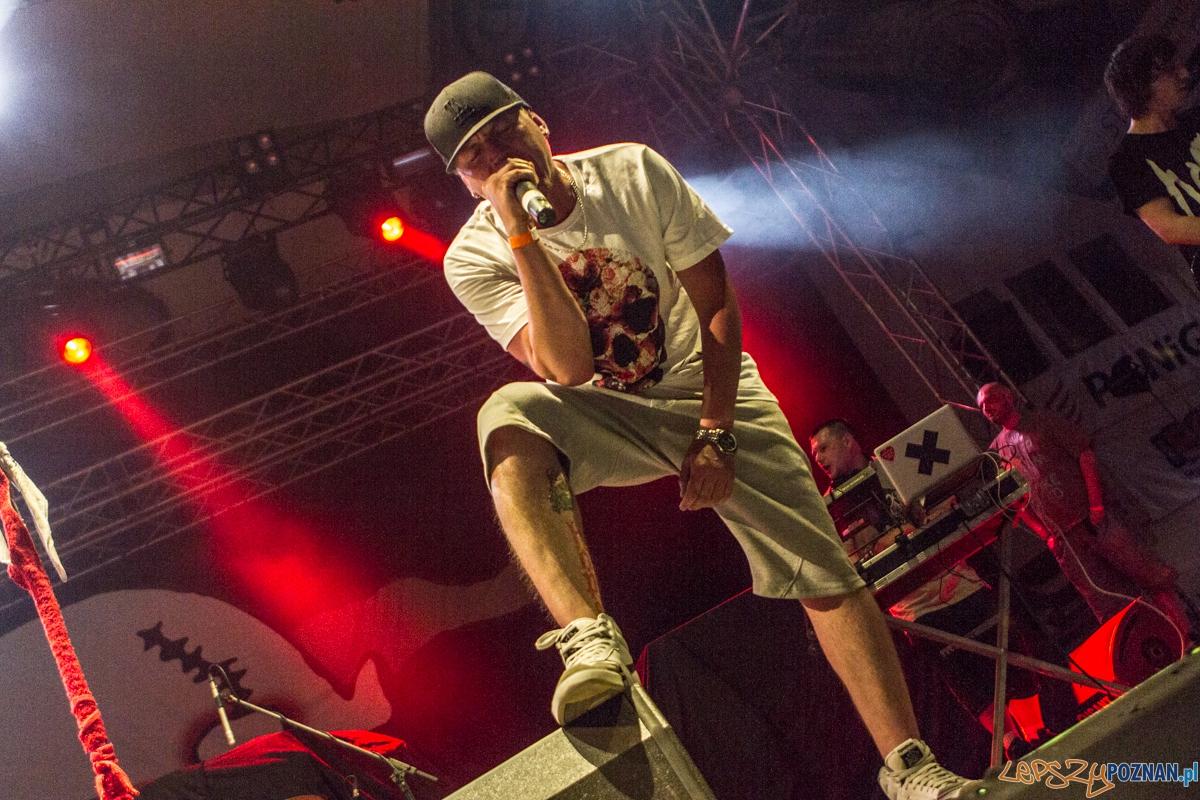 Koncert Limp Bizkit - support - Hope -  Kraków 07.06.2015 r.  Foto: lepszyPOZNAN.pl / Paweł Rychter
