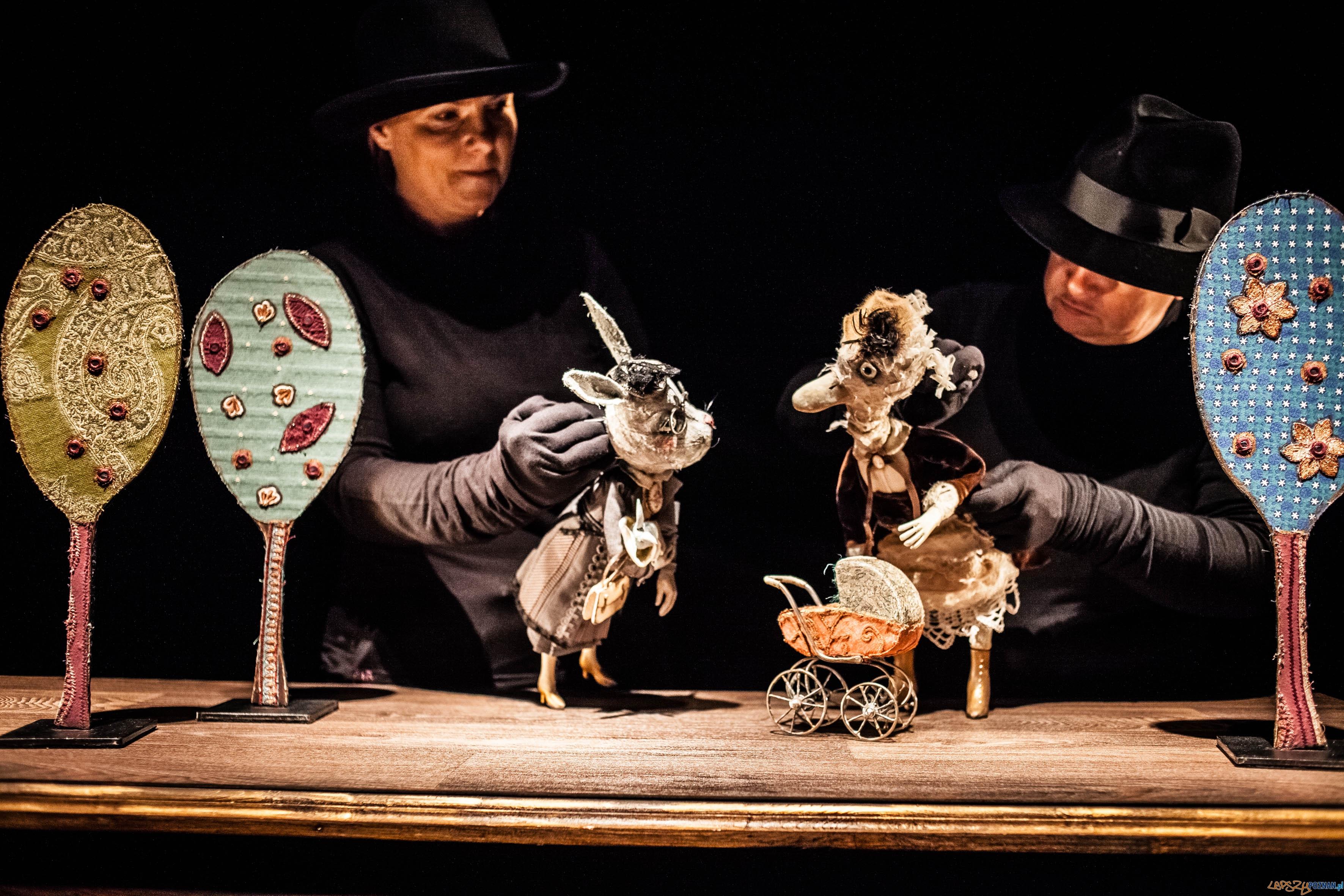 A niech to Gęś kopnie - spektakl Teatru Animacji (6)  Foto: Bartłomiej Jan Sowa