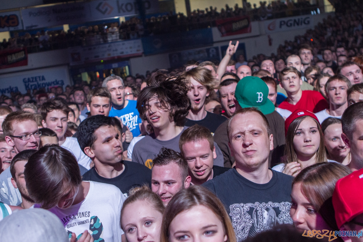 Koncert Limp Bizkit - Kraków 07.06.2015 r.  Foto: lepszyPOZNAN.pl / Paweł Rychter