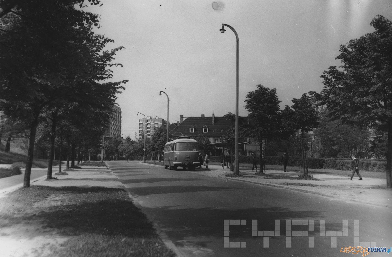 Autobus pospieszny C na przystanku przy ul. Łozowej nieopodal skrzyżowania z ul. Czechosłowacką - lata 70.te  Foto:  S. Wiktor/  Cyryl
