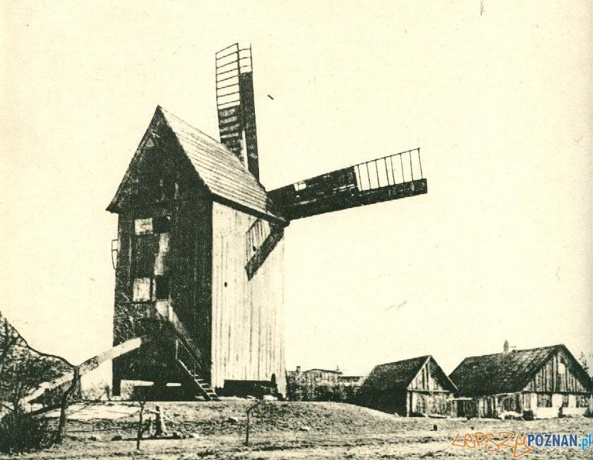 Młyn naWildzie 1890 warkoczewska