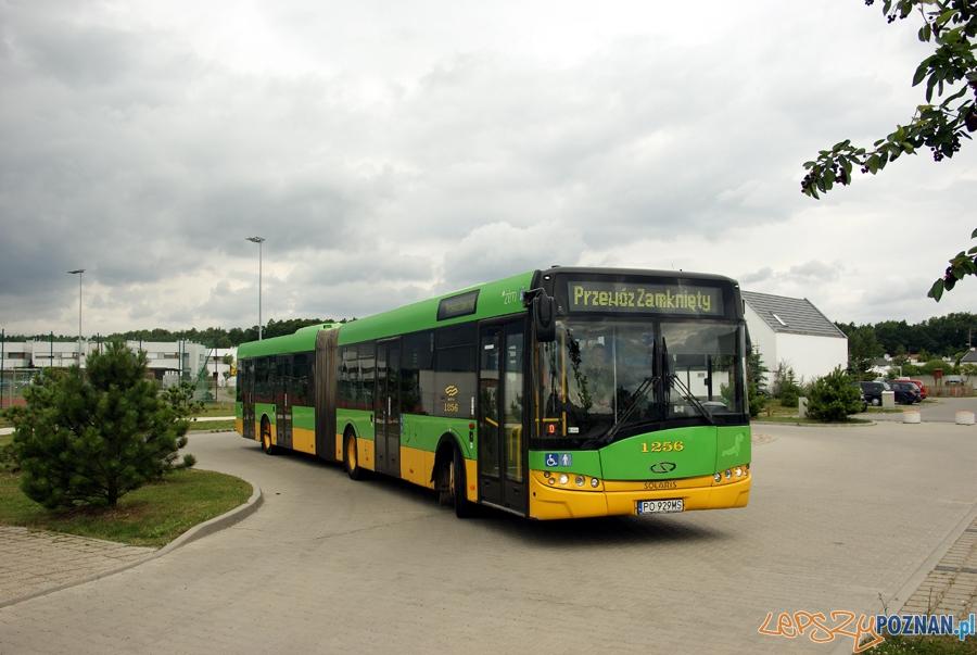 Autobus na rondzie w Dąbrówce