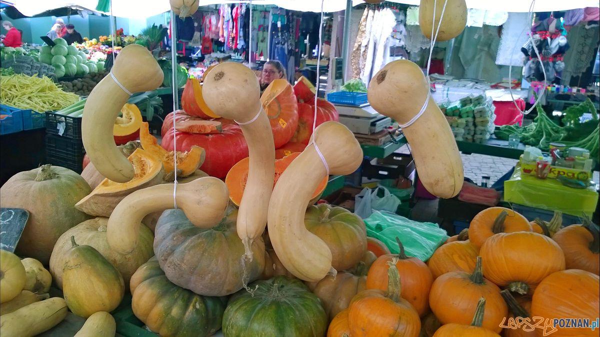 Dynie na Rynku Wildeckim  Foto: TD