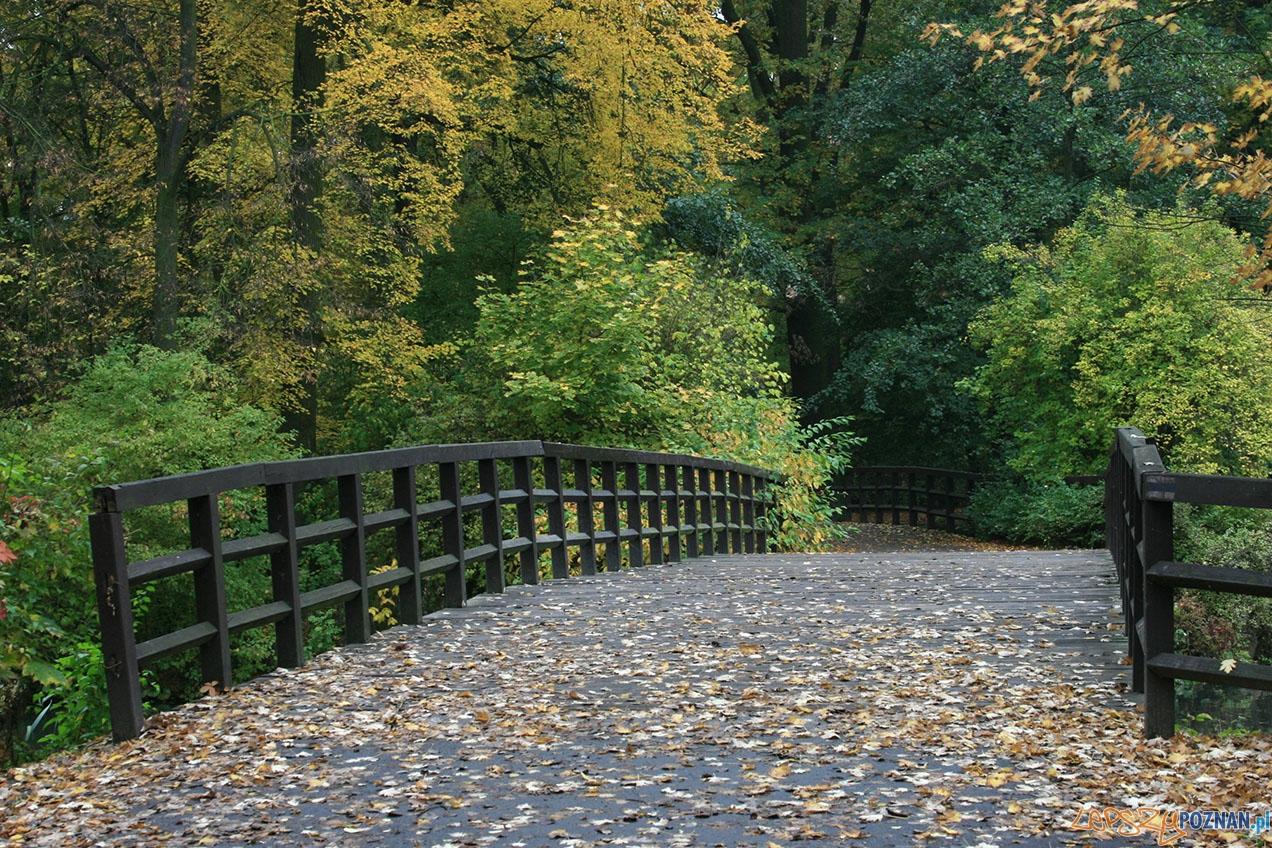 Park Sołacki  Foto: poznaniacy.eu