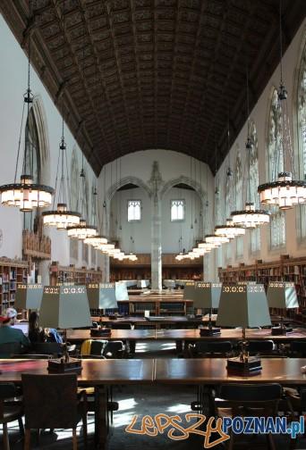 Biblioteka Harvard
