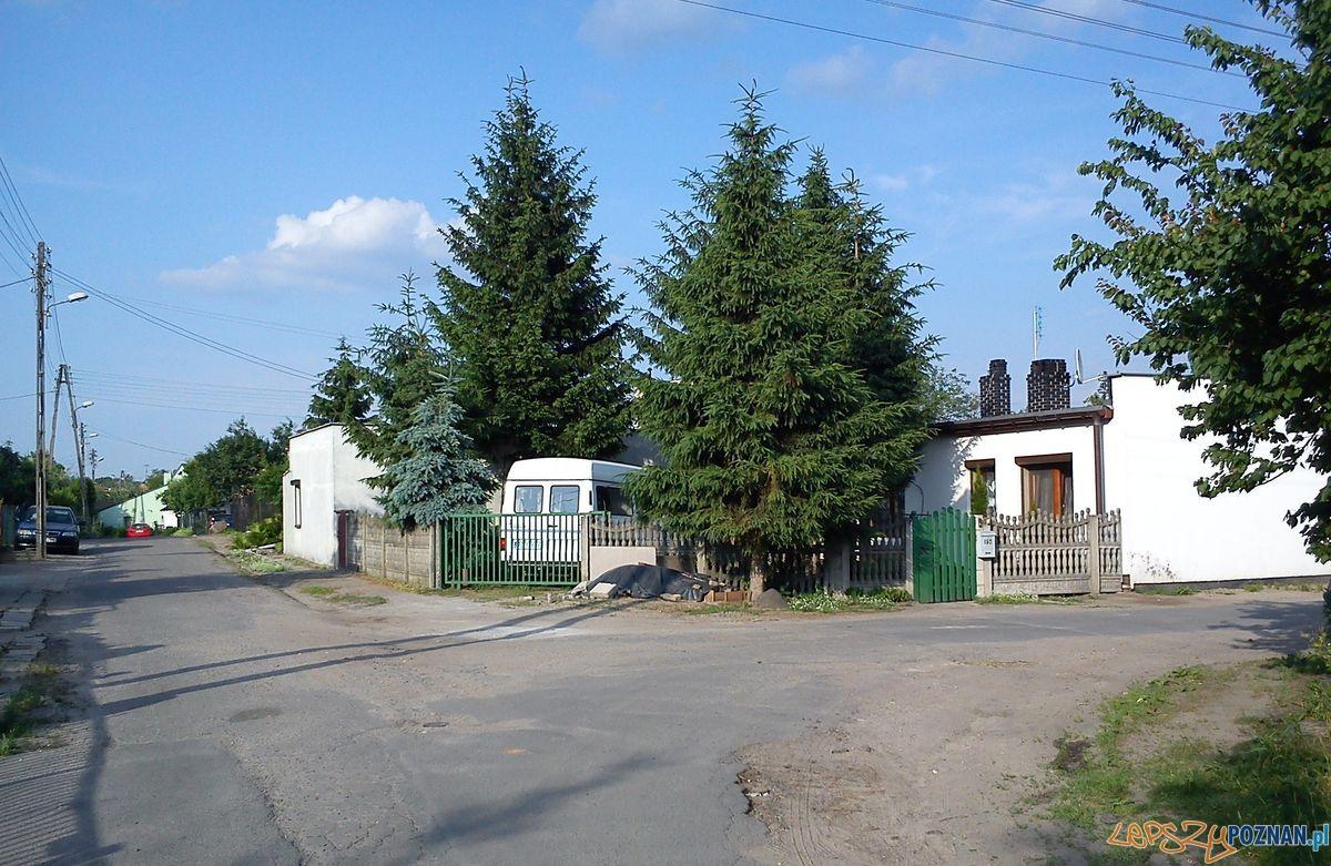 Osiedla Skorupki na Górczynie