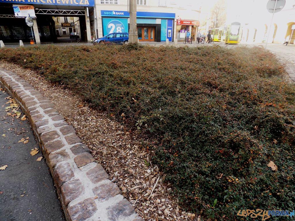 ul. Gwarna renowacja murku  Foto: Rada Osiedla Stare Miasto