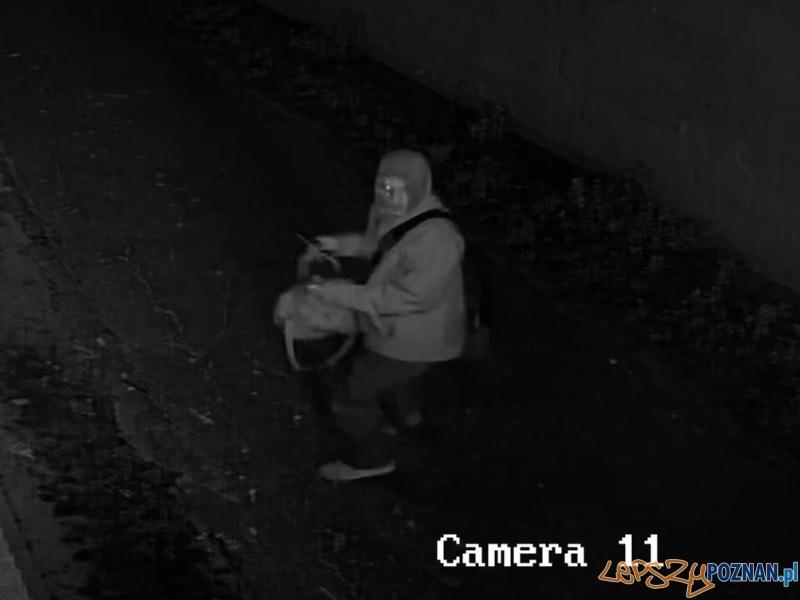 Nożownik zaatakował kobietę w Kórniku