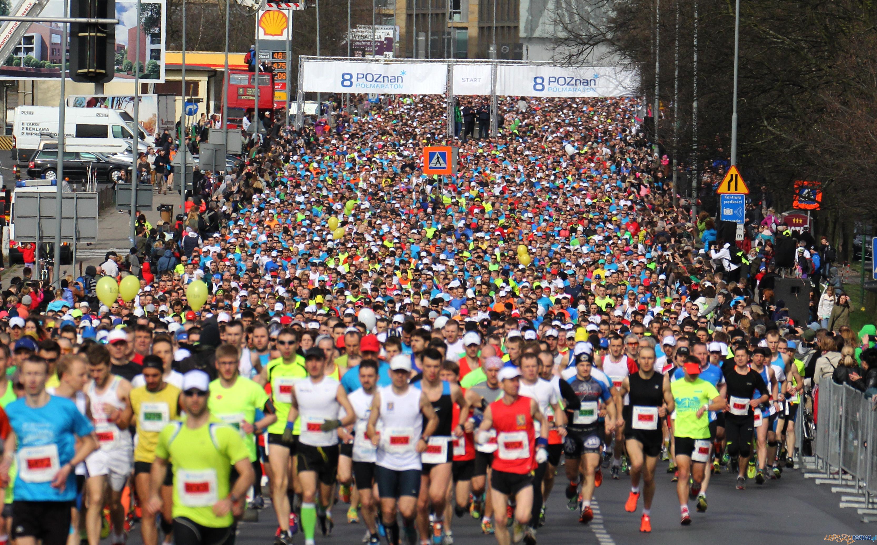 Półmaraton na starcie  Foto: POSiR