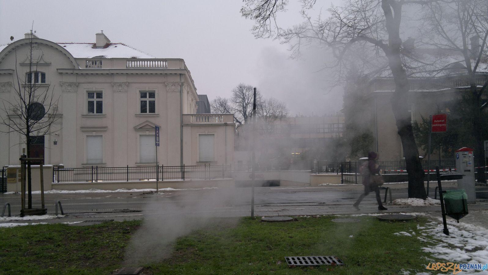Zima w Poznaniu  Foto: TD