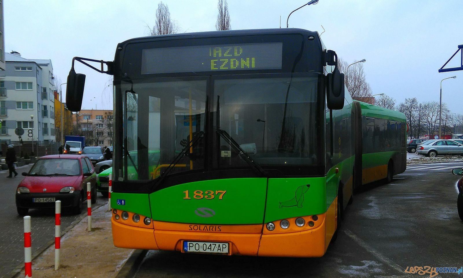 Autobus Rataje  Foto: Tomasz Dworek