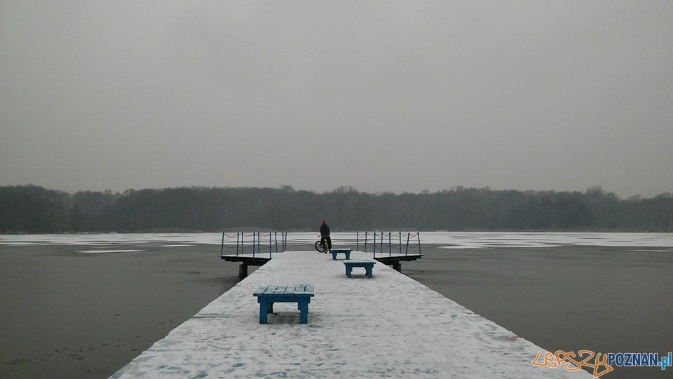 Jezioro Rusałka zimą  Foto: Paulina Walentowska