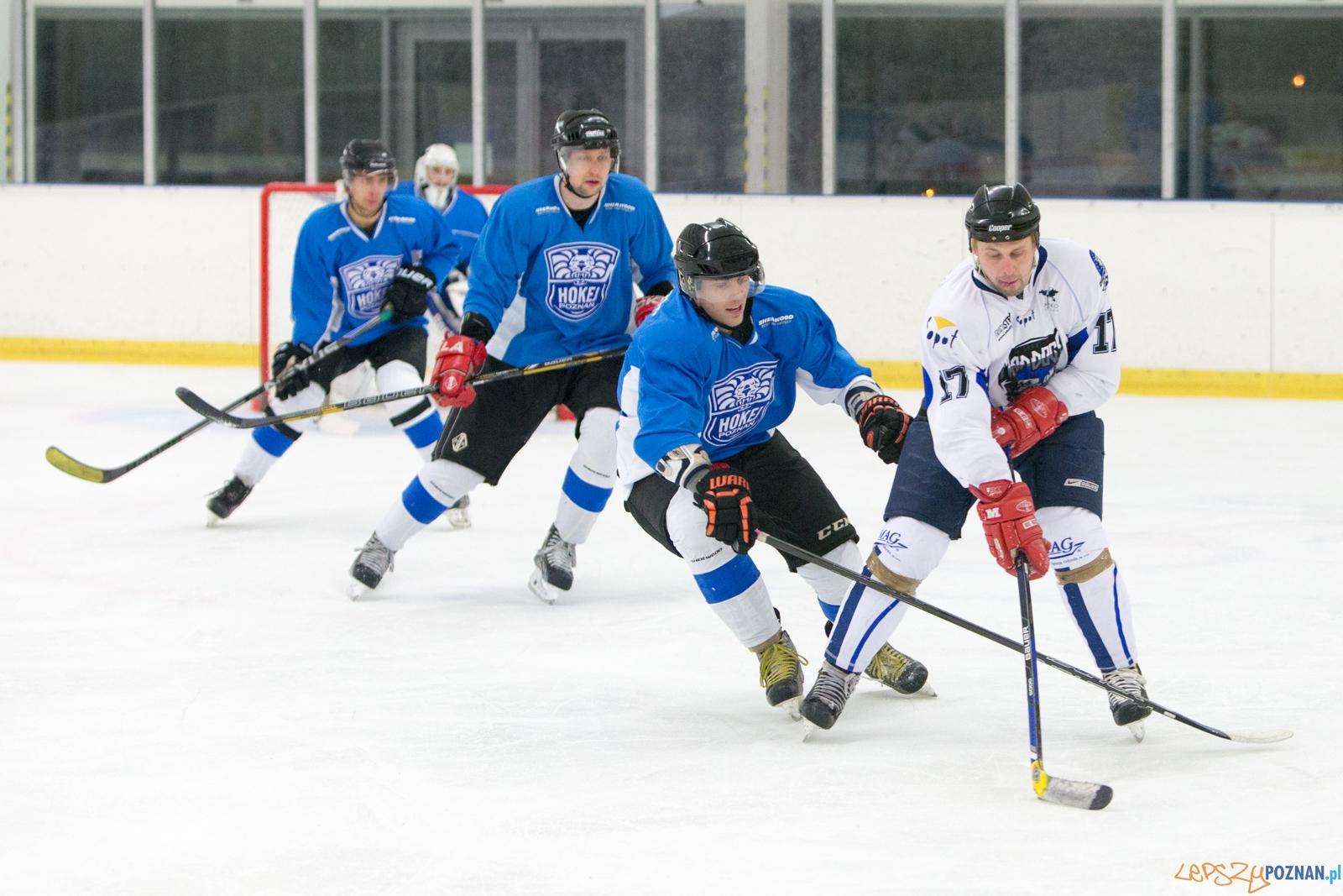 II liga hokeja na lodzie: Hokej Poznań- SKH Mad Dogs Sopot  Foto: lepszyPOZNAN.pl / Piotr Rychter