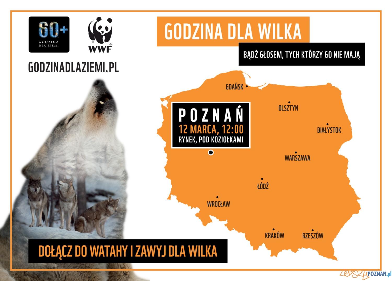 Dołącz do watahy, zawyj dla wilka - akcja WWF Polska 2016