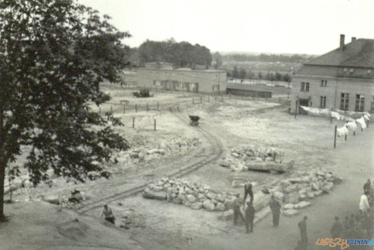Niwelacja terenów na Śródce 1936