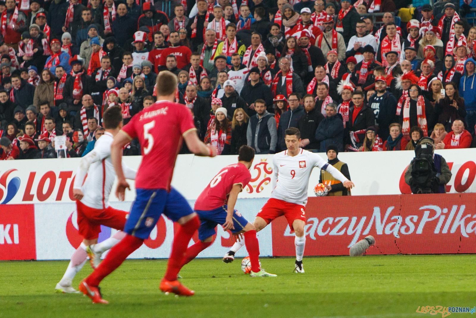 mecz polska serbia poznan search results summary daily