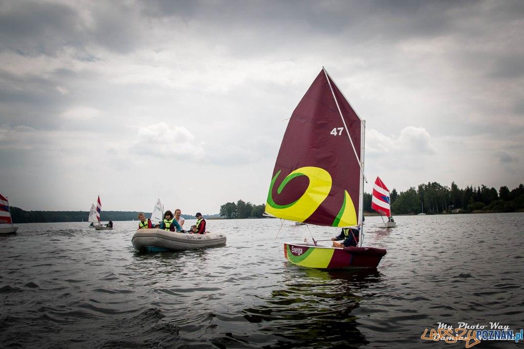 Piknik żeglarski nad jeziorem Kierskim (13)  Foto: materiały prasowe / POZŻ