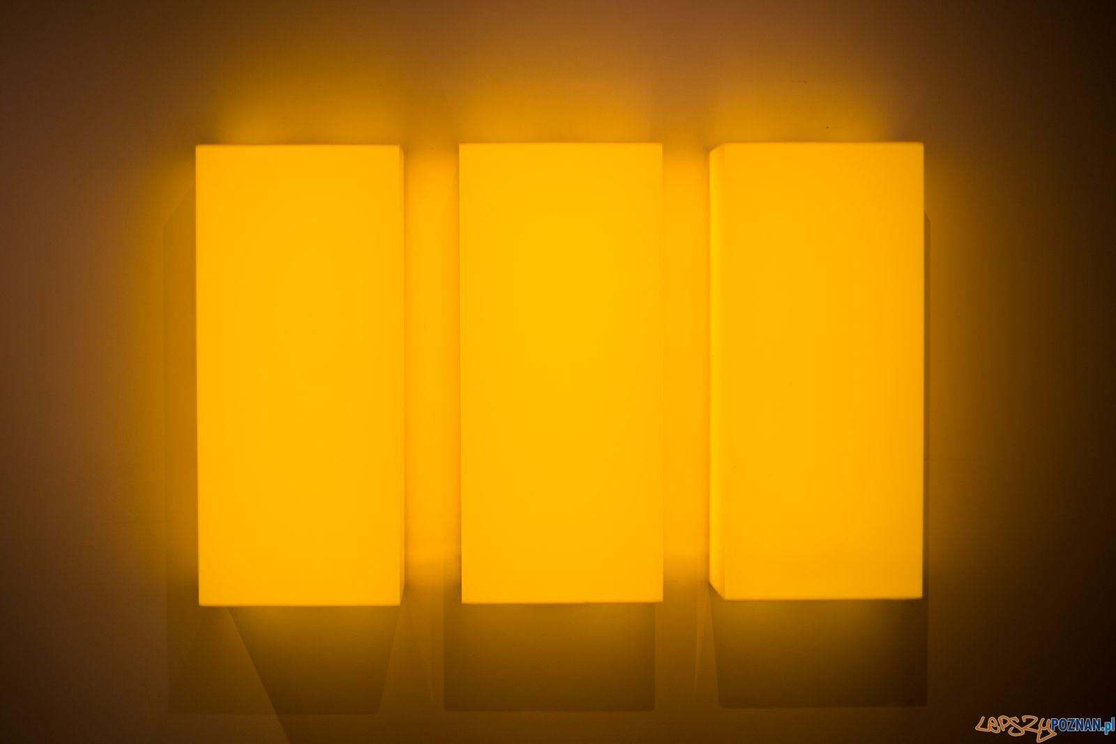 Wystawa Leona Tarasewicza w Galerii Ego (3)  Foto: materiały prasowe