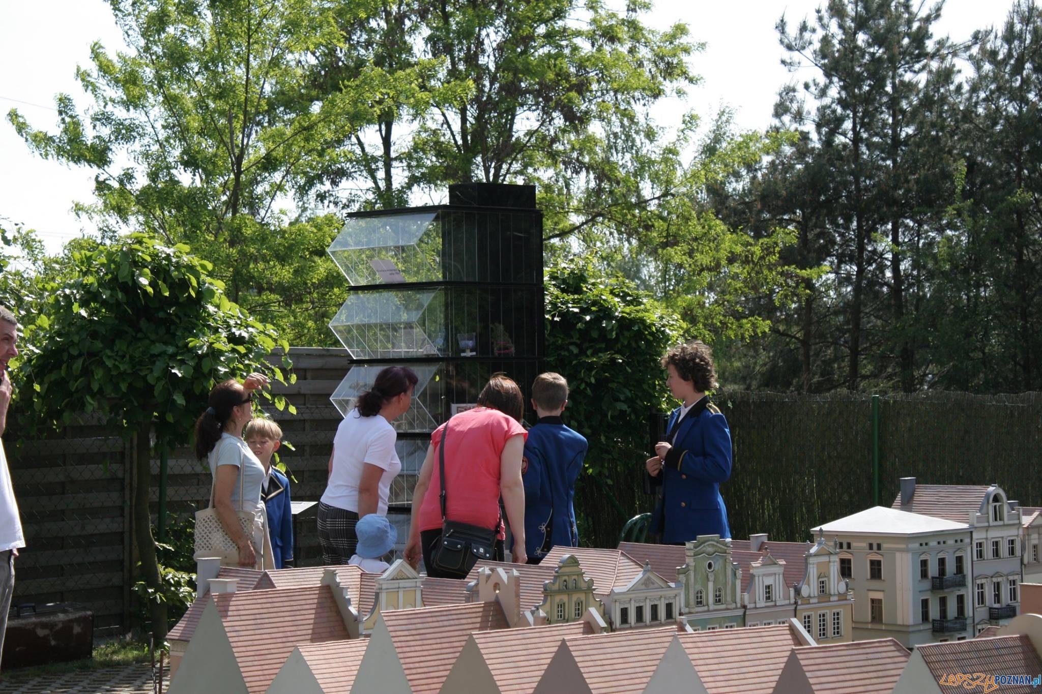 Centrum Sztuki Współczesnej w Parku miniatur K. Wnuk