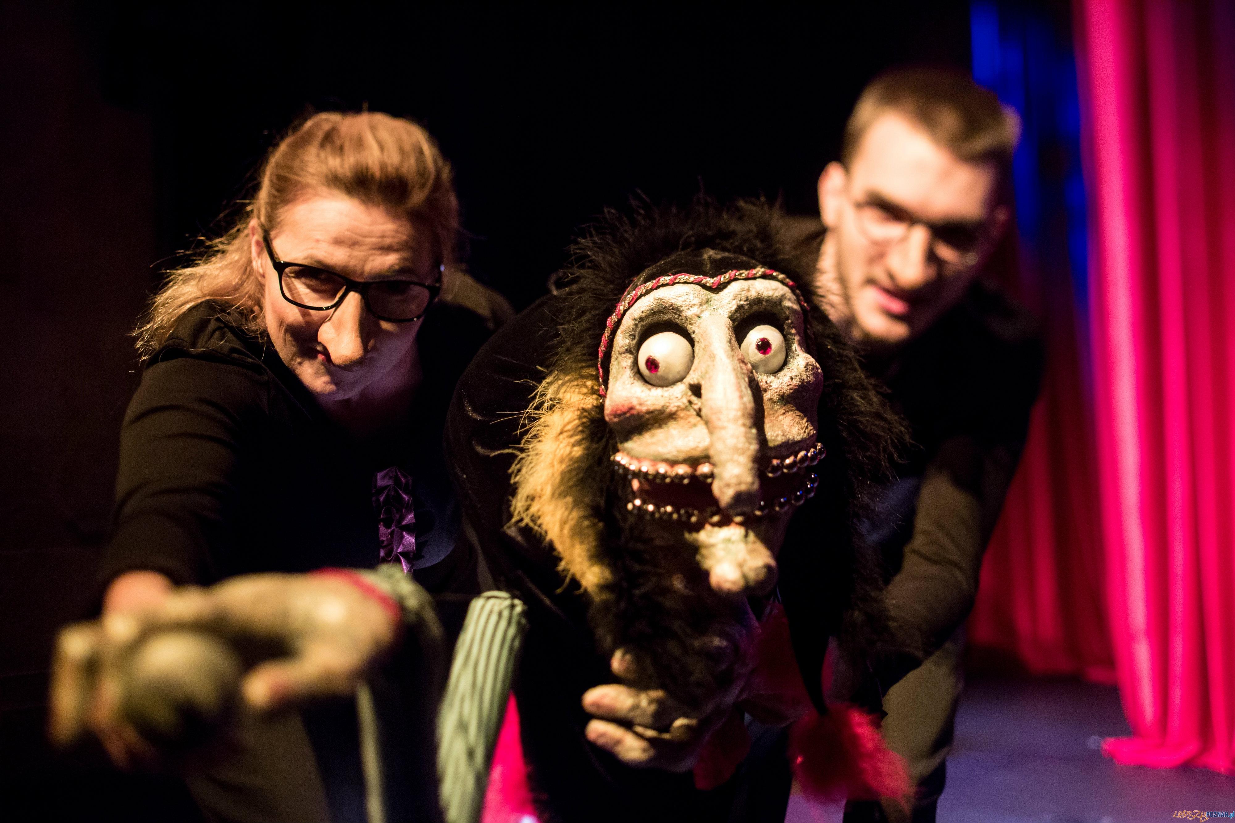 Molier, reż. N. Tranter  Foto: Jakub Wittchen