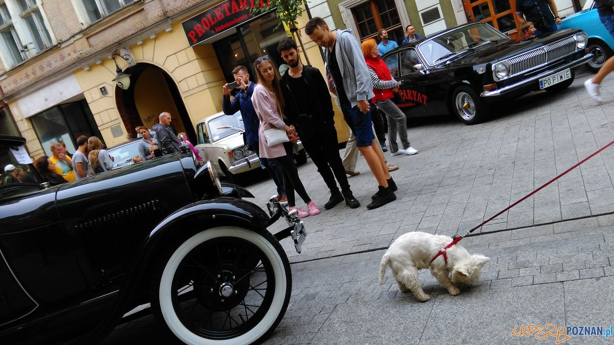 dni-starego-miasta-zabytkowe-samochody-na-wroclawskiej-fot-t-5  Foto: